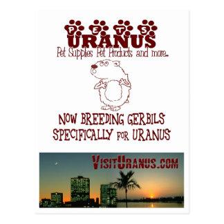 Pets Uranus Postcard