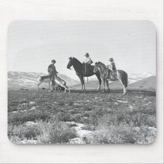 Petting Antelopes. Mouse Pad