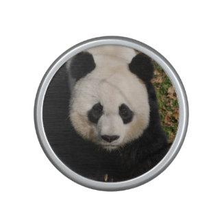 Petulant Panda Bear Bluetooth Speaker