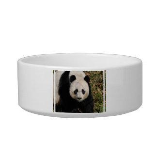 Petulant Panda Bear Bowl