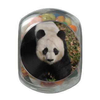 Petulant Panda Bear Glass Candy Jars