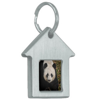 Petulant Panda Bear Pet ID Tag