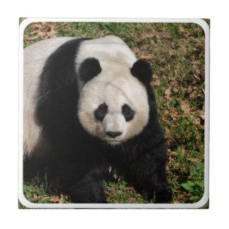 Petulant Panda Bear Tile