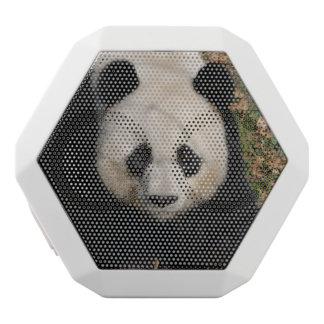 Petulant Panda Bear White Bluetooth Speaker
