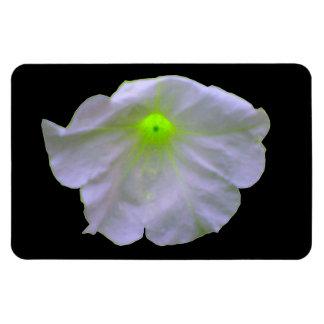 Petunai Green Glow Premium Magnet