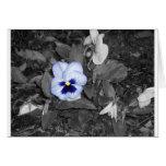 Petunia azul clara tarjeta