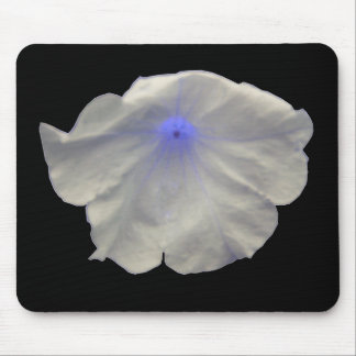 Petunia Blue Glow Mousepad