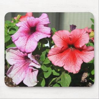Petunia Flowers Mousepad