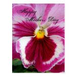 Petunia fucsia hermosa del día de madres postal