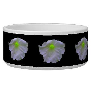 Petunia Green Glow Dog Bowl