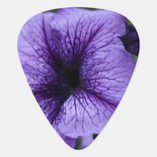 Petunia Guitar Pick