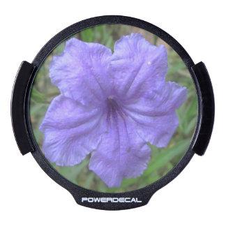 Petunia Mexican Purple LED Car Window Decal