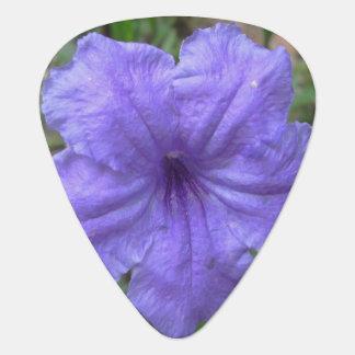 Petunia Mexican Purple Pick