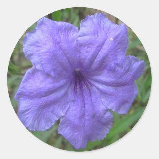Petunia Mexican Purple Round Sticker