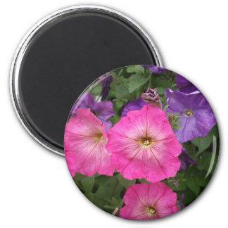 Petunia Pink Yellow Eye Magnet