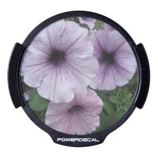 Petunia Purple White LED Car Decal