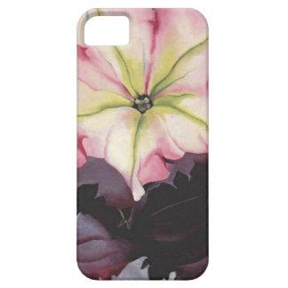 Petunia rosada iPhone 5 fundas
