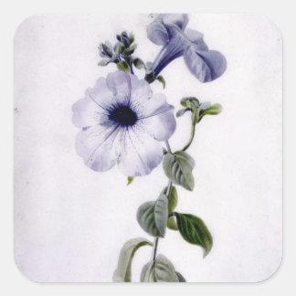 Petunia Square Sticker