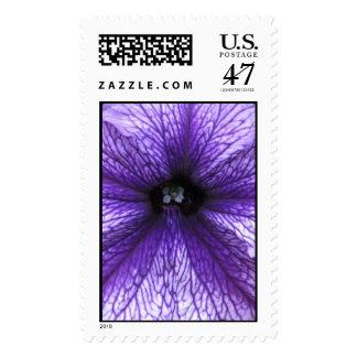 Petunia Stamp