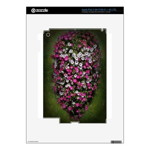 Petunia vignette.jpg de DSC09585hanging iPad 3 Pegatinas Skins