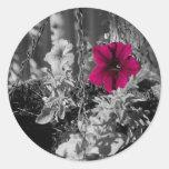 Petunia violeta pegatina redonda