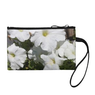 Petunia White Flower