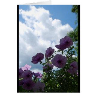 Petunias contra un cielo en parte nublado tarjeta pequeña