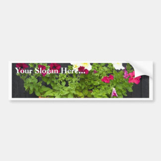 Petunias Hanging In The Pot On The Wooden Wall Bumper Sticker