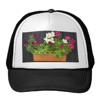 Petunias Hanging In The Pot On The Wooden Wall Trucker Hat