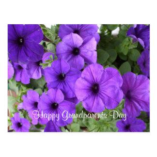 Petunias para el día del abuelo tarjetas postales