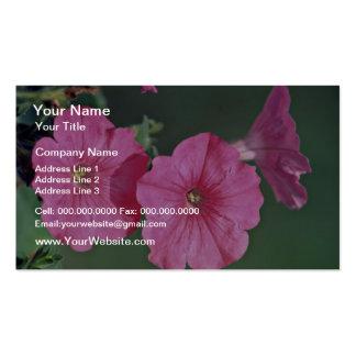 Petunias Pink flowers Business Cards