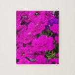 Petunias púrpuras puzzle con fotos