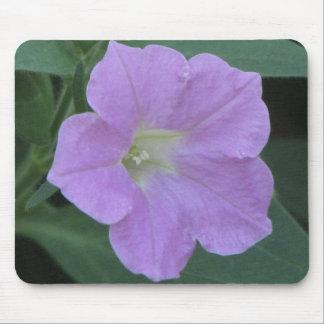 Petunias purpúreas claras alfombrillas de raton