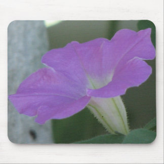 Petunias purpúreas claras tapetes de raton