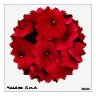 Petunias rojas de la gota de lluvia
