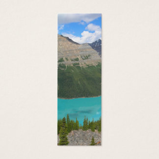 Peyto Glacial Lake Banff Park Alberta Canada Mini Business Card