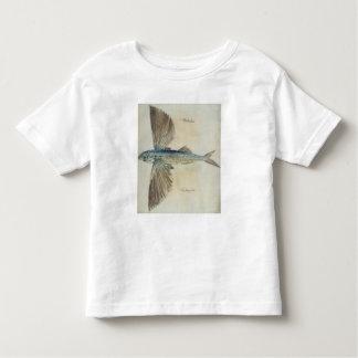 Pez volador poleras