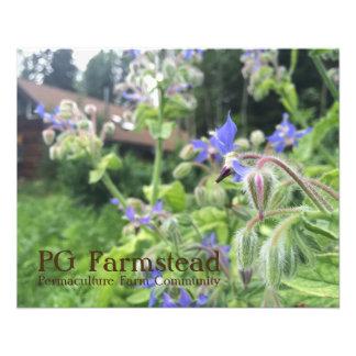 PG Farmstead flyer