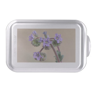 Phacelia Purple Wildflowers Cake Pan