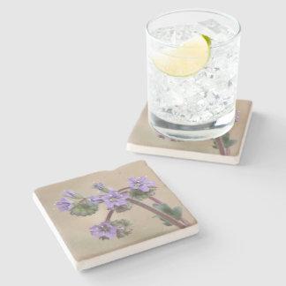 Phacelia Purple Wildflowers Stone Beverage Coaster
