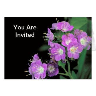 phacelia púrpura tarjeta de felicitación