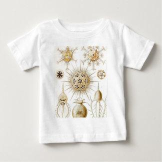 PHAEODARIA Ernst Haeckel Kunstformen der Natur Baby T-Shirt