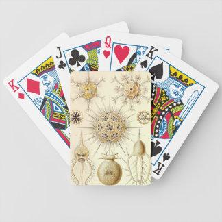 PHAEODARIA Ernst Haeckel Kunstformen der Natur Bicycle Playing Cards