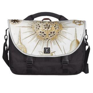 PHAEODARIA Ernst Haeckel Kunstformen der Natur Laptop Bag