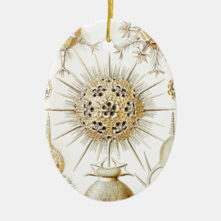 PHAEODARIA Ernst Haeckel Kunstformen der Natur Double-Sided Oval Ceramic Christmas Ornament