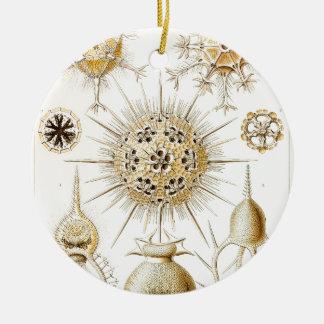 PHAEODARIA Ernst Haeckel Kunstformen der Natur Double-Sided Ceramic Round Christmas Ornament