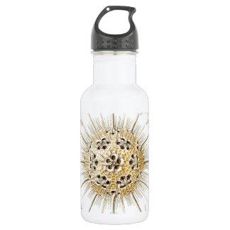PHAEODARIA Ernst Haeckel Kunstformen der Natur Water Bottle