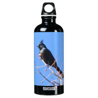 Phainopepla Bottle SIGG Traveler 0.6L Water Bottle