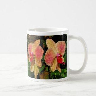 Phalaenopsis Classic White Coffee Mug
