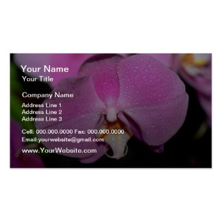 Phalaenopsis flowers business cards